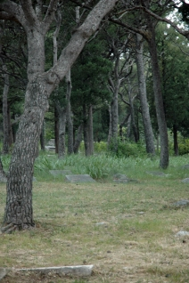 jewishgraveyard